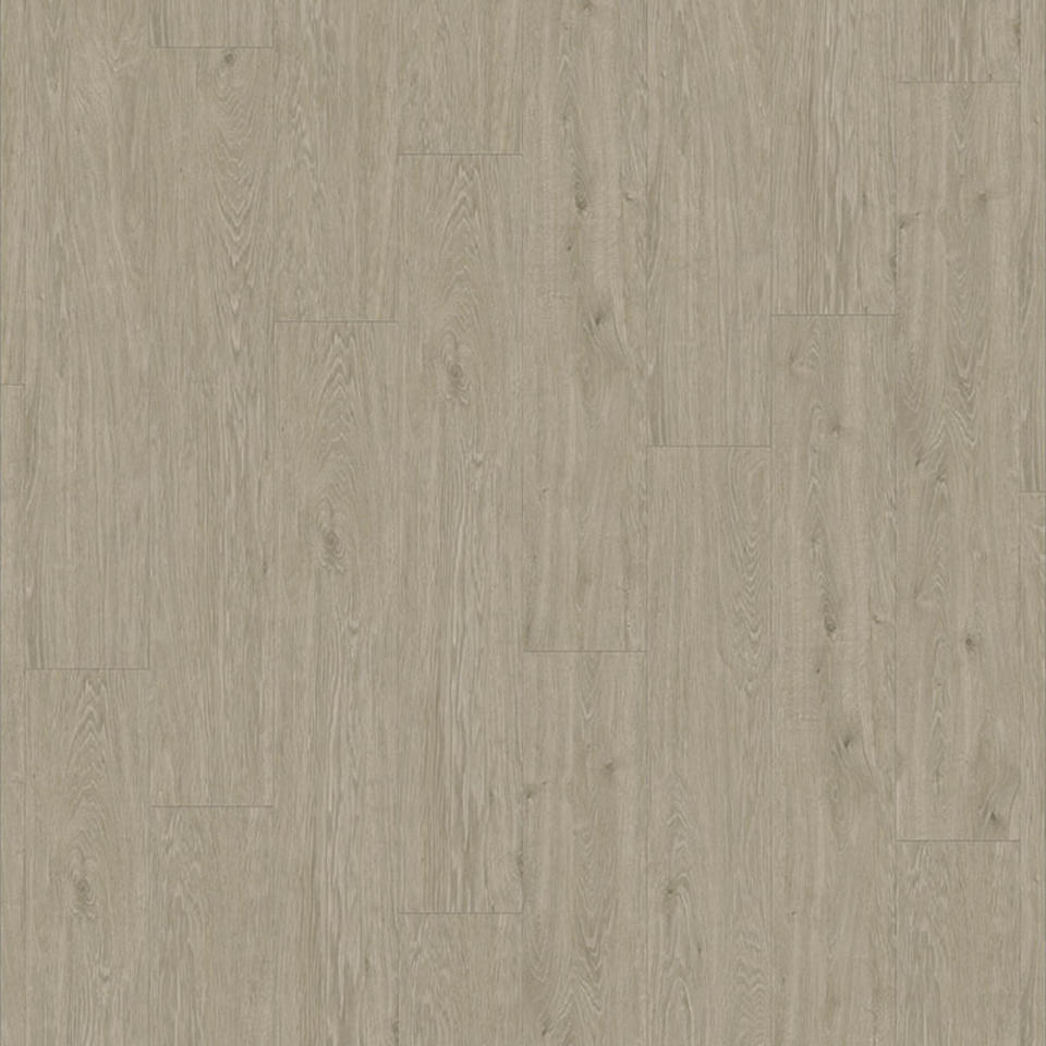 Lime Oak GREY